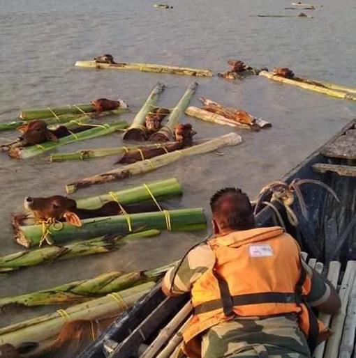 Kerala ravaged by floods, 95 deaths so far, relief and rescue work intensified | बाढ़ से केरल बेहाल, अब तक 95 लोगों की मौत, राहत और बचाव कार्य तेज