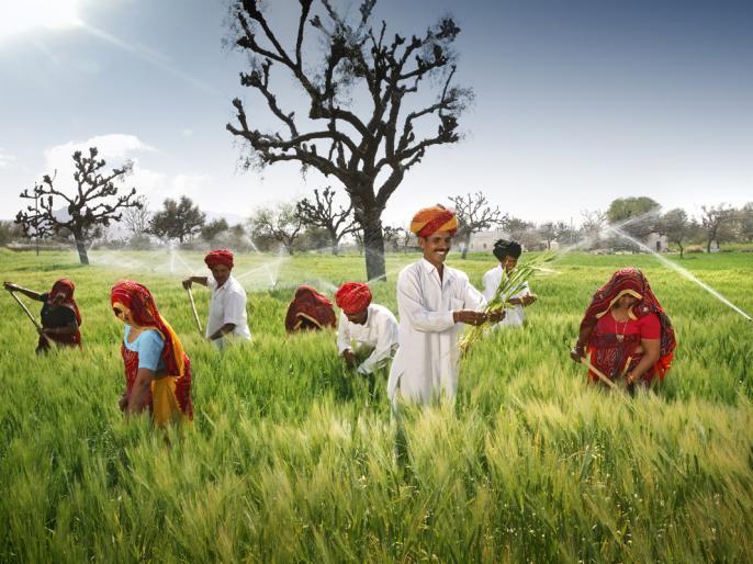 Changes in Essential Commodities Act will increase investment in agricultural sector says NITI Aayog member Ramesh Chand | नीति आयोग के सदस्य के सदस्य प्रो. रमेश चंद ने कहा- आवश्यक वस्तु अधिनियम एक्ट में बदलाव से कृषि क्षेत्र में बढ़ेगा निवेश
