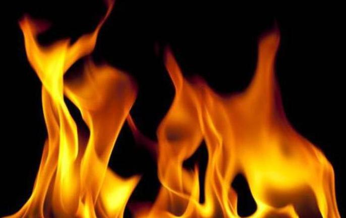 Rajasthan: Four trucks and a Man burnt alive in gruesome accident in Jaipur | राजस्थान: भीषण हादसे में एक शख्स जिंदा जला, चार ट्रकों में लगी आग