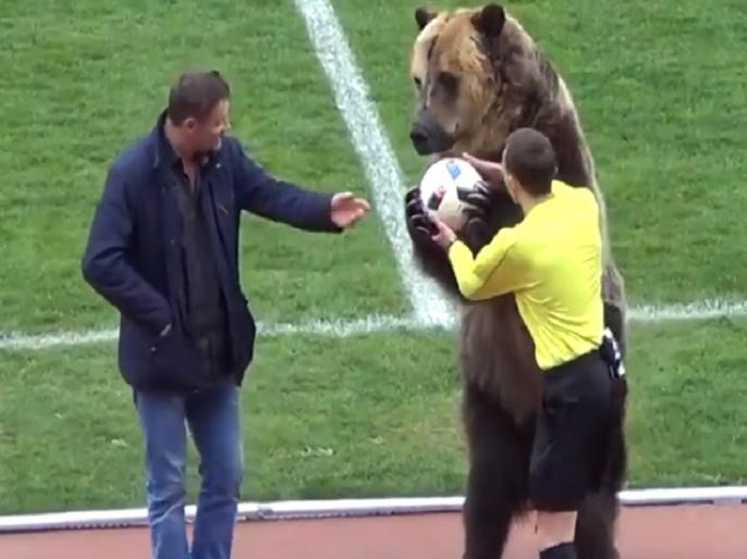 russian football league under controversy after a beer used for performance before match | वीडियो: फुटबॉल मैच में भालू को उतारा मैदान पर, अब दुनिया भर में हो रही है आलोचना