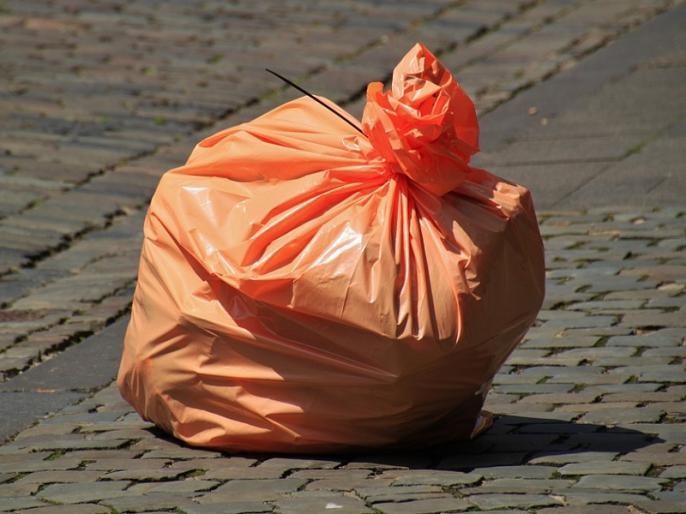Dr. S.S. Mantha Blog: Can Paper be a substitute for Plastic? | डॉ. एस.एस. मंठा का ब्लॉग: प्लास्टिक का विकल्प कागज हो सकता है?