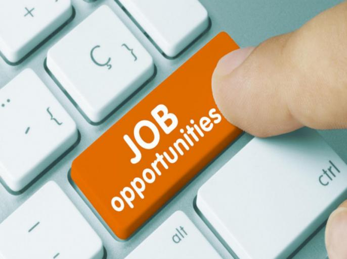 uttar pradesh: government jobs in commerce department | उत्तर प्रदेश में सरकारी नौकरी पाने का सुनहरा मौका, जाने किन पदों पर निकलनी हैं भर्तियां