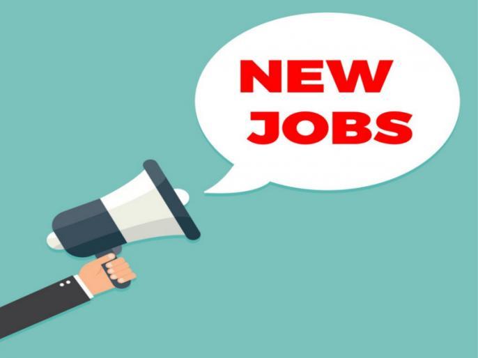 Rajasthan High Court Stenographer Recruitment 2020: 434 Vacancies Notified, Online Application | Rajasthan HC Recruitment 2020: राजस्थान हाई कोर्ट में निकली स्टेनोग्राफर के पदों पर वैकेंसी, एक लाख रुपये तक है सैलरी, ऐसे करें आवेदन
