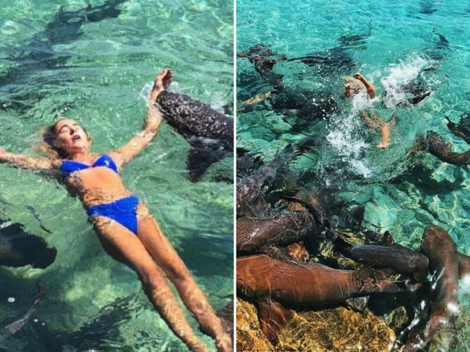 19 years american model katarina elle zarutskie shark attack in bahamas | स्विमिंग के दौरान कैटरीना पर शार्क ने किया हमला, फोटोशूट के वक्त हुईं लहूलुहान