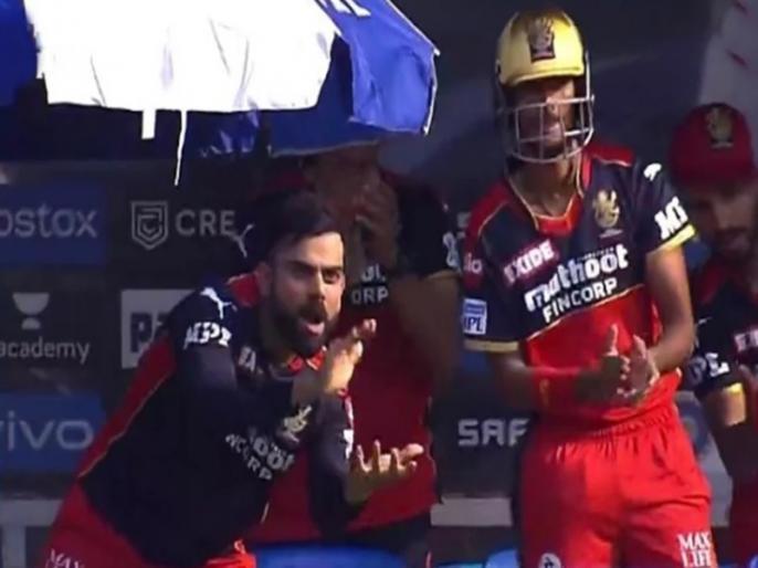 IPL 2021 RCB vs KKR virat kohli applauding glenn maxwell video goes viral   IPL 2021: ग्लेन मैक्सवेल की ताबड़तोड़ बल्लेबाजी ने जीता कप्तान विराट कोहली का दिल, शॉट देख पीटी जमकर ताली और फिर...