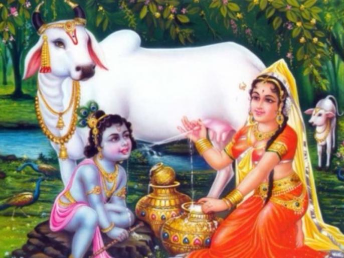A woman from Patna hidden in Nidhivan to see Lord Krishna's Leela in Vrindavan | वृंदावन में भगवान कृष्ण की लीला देखने के लिए निधिवन में छिपी पटना से आई युवती