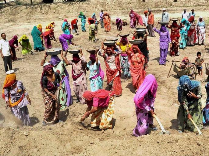 concession in private farm work in MGNREGA | भरत झुनझुनवाला का ब्लॉगः मनरेगा में निजी कृषि कार्य की छूट दीजिए