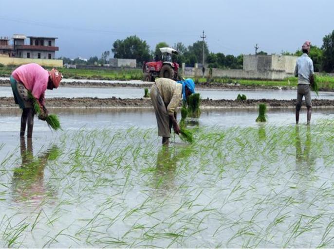 imd predicts near normal monsoon at 96 of long period average | किसानों के लिए अच्छी खबर: सामान्य रहेगा इस साल मानसून, फसल को होगा लाभ