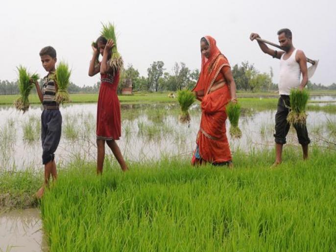 IMD predicts normal monsoon rainfall in 2018 india | किसानों के लिए राहत भरी खबर, मौसम विभाग ने सामान्य मानसून रहने की जताई उम्मीद