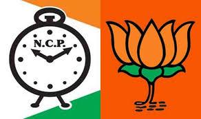 Sangali-Miraj-Kupwad Municipal Corporation NPC BJPpost of MayorDeputy Mayor of Congress Umesh Patil   सांगली मिराज कुपवाड़ नगर निगमः एनसीपी ने भाजपा को दिया झटका,महापौर का पद छीना,कांग्रेस के उमेश पाटिल उप महापौर