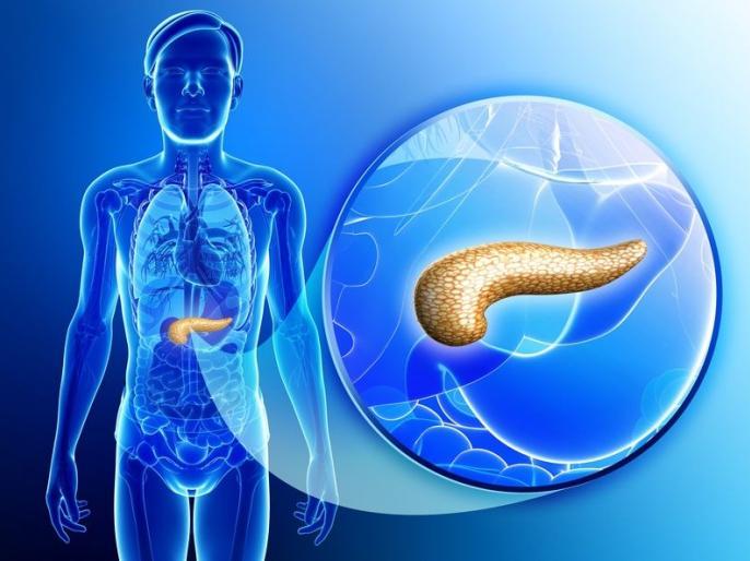 pancreatitis causes, symptoms, risk factors, home remedies, food to eat and do not eat for treatment, side effects in Hindi | धीरे-धीरे इस मुख्य अंग को खराब कर देती हैं ये 10 चीजें, बढ़ जाता है डायबिटीज, बवासीर का खतरा