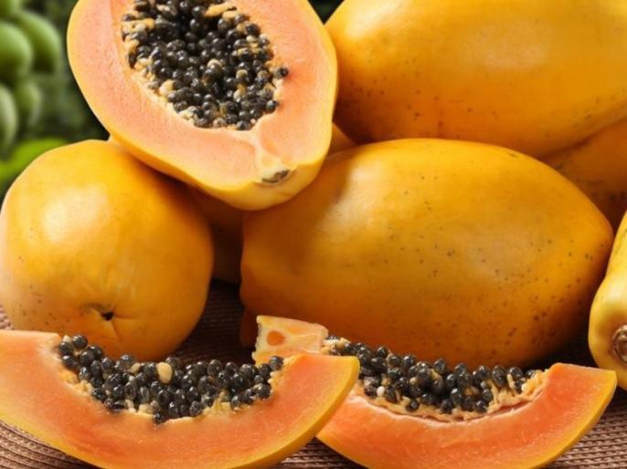 Healthy Diet Tips : Health benefits and side effects of papaya for diabetes, high blood pressure patients and pregnant women in Hindi | ऐसे लोग गलती से भी न खायें पपीता, बढ़ सकता है ब्लीडिंग, डायबिटीज, बीपी का खतरा, लड़कियां होशियार