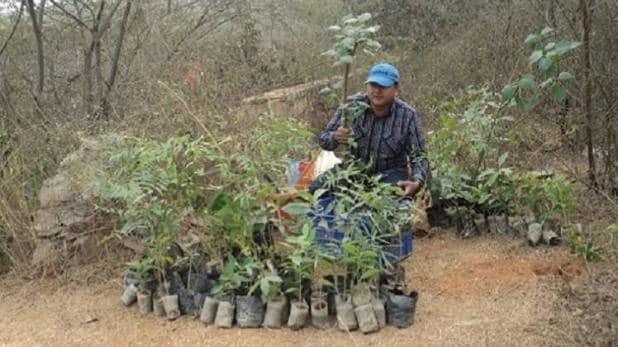 'balanced environment can be achieved by walking on the path of greenery revolution' says pepal baba | 'हरियाली क्रांति के रास्ते पर चलकर हासिल किया जा सकता है संतुलित पर्यावरण का लक्ष्य', पर्यावरण सुरक्षा की छेड़ी मुहीम