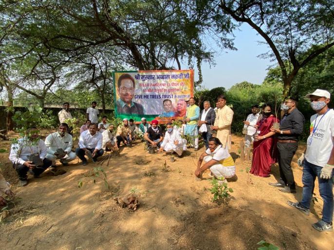 Naqvi's birthday celebrated as Hariyali Divas, 63 peepal and neem trees planted in Hanuman temple   हरियाली दिवस के रूप में मनाया गया नकवी का जन्मदिन्म, हनुमान मंदिर में लगाए गए 63 पीपल और नीम के पेड़