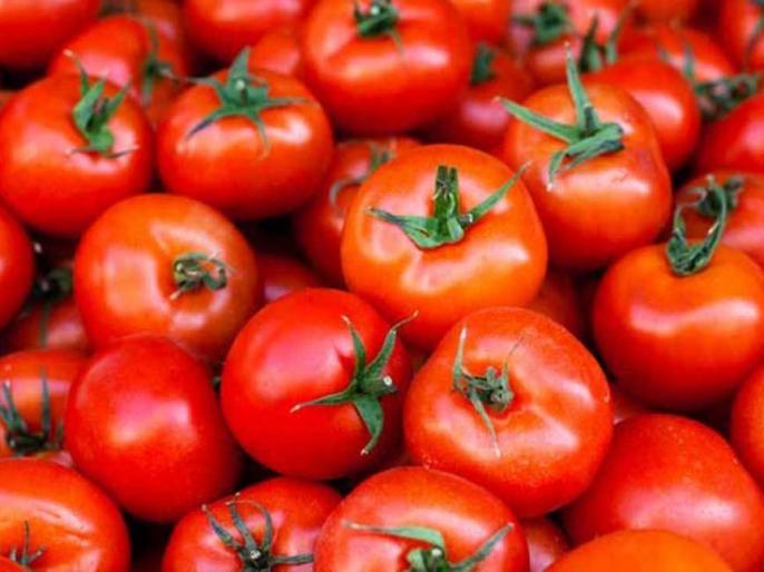 Government Asks Mother Dairy to Sell Tomatoes at Rs 55 per kg or Below as Price Continues to Surge | मदर डेयरी उपभोक्ताओं को 55 रुपये या उससे कम कीमत पर मिलेगा टमाटर, सरकार ने जारी किए आदेश