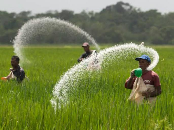 Govt to consider fixing nutrient-based subsidy rate for urea: Sources | यूरिया के लिएपोषण आधारित सब्सिडी दर तय करने पर सरकार कर रही विचार: सूत्र