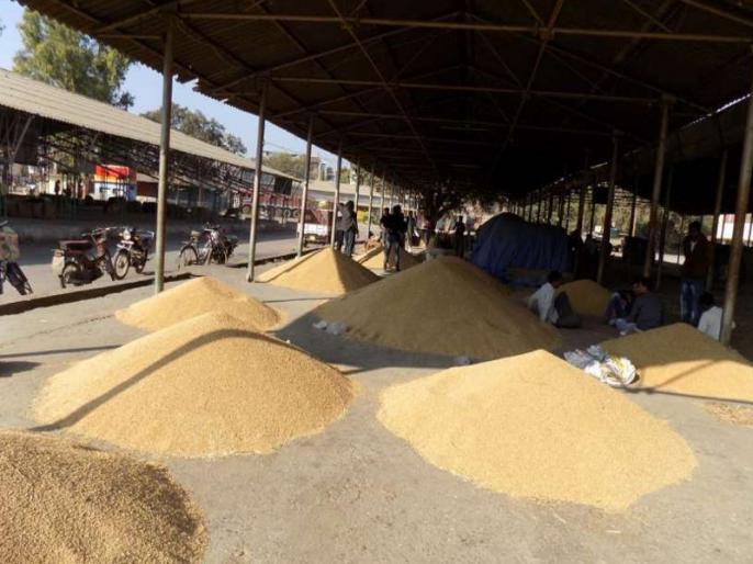 Government set a target of producing 29-83 crore tonnes of food grains for the crop year 2020-21   सरकार ने फसल वर्ष 2020-21 के लिये 29.83 करोड़ टन खाद्यान्न उत्पादन का लक्ष्य तय किया