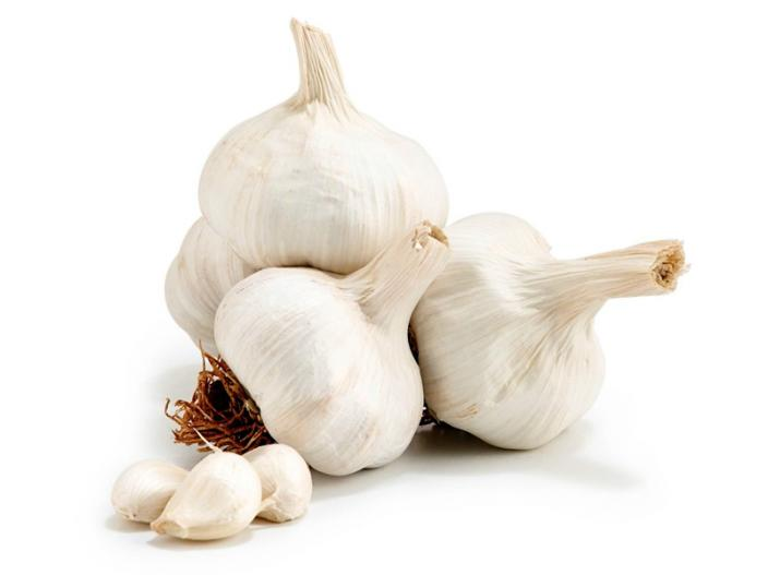 Garlic |