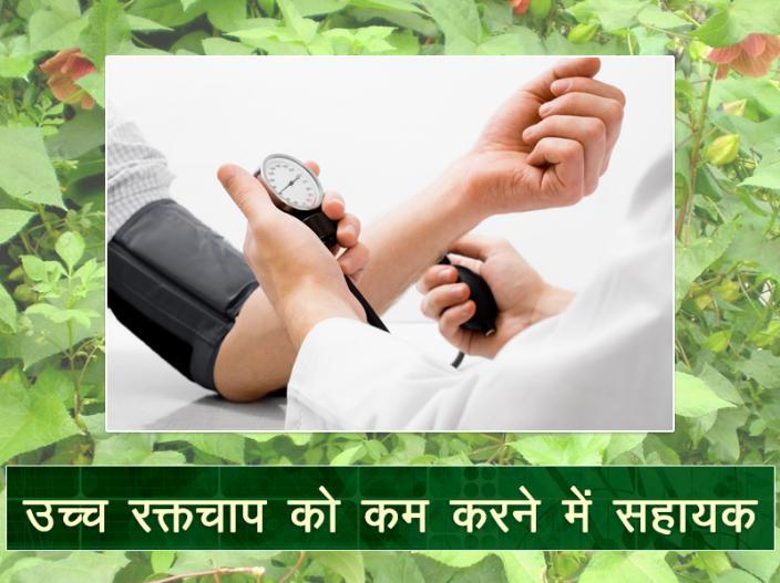 health Benefits Of Okra Lady's Finger |