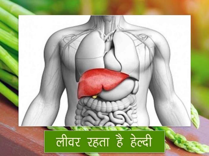 In Pics: Health and sex Benefits of taking Asparagus aka Shatavari on daily basis |